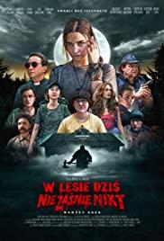 Nobody Sleeps in the Woods Tonight (Netflix) (2020) คืนผวาป่าไร้เงา